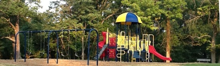 Riddleview Park Swingset and Play Structure